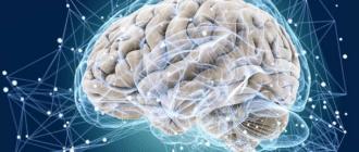 Мозг, память, способ